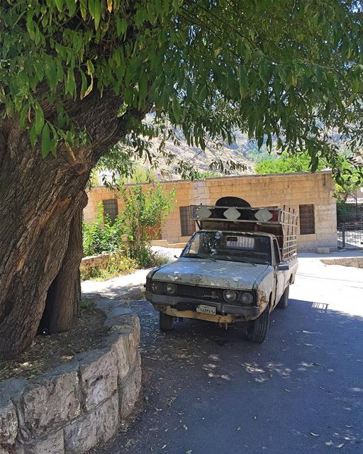 Where time stops  village  mountain  tree  oldcar  countrylife ... (Tannourine)