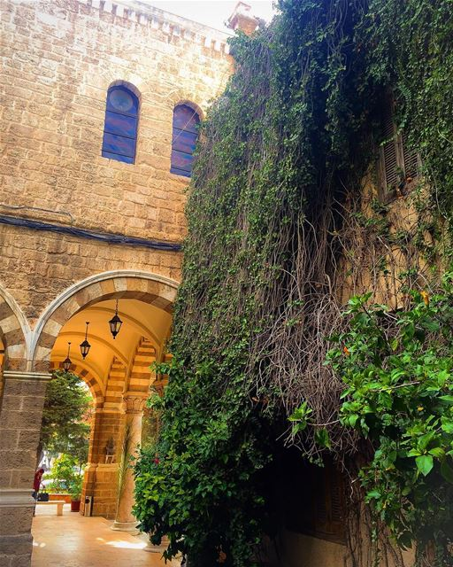 Lateral view tradition culture stone church tree hedge leaves ... (St Maron Church)