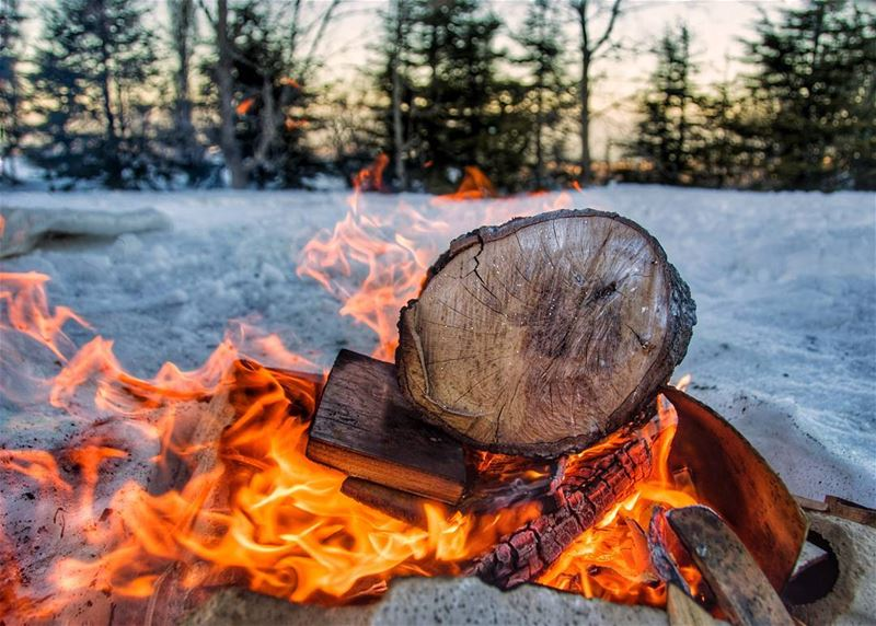 🔥⛺🌲..... fire bonfire campfire forest camp camping snow cold warm... (Bakich)