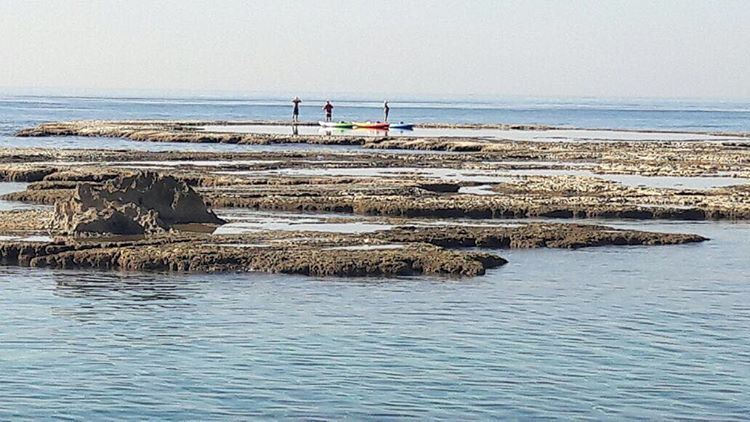 Would you consider swimming in November? We just spotted some adventurous... (Byblos - Jbail بيبلوس/جبيل)