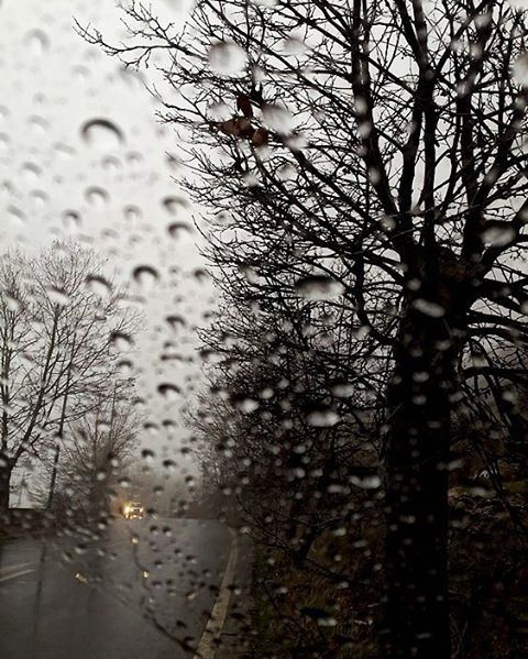 rain raindrops glass lebanon sawfar trees road photooftheday ...