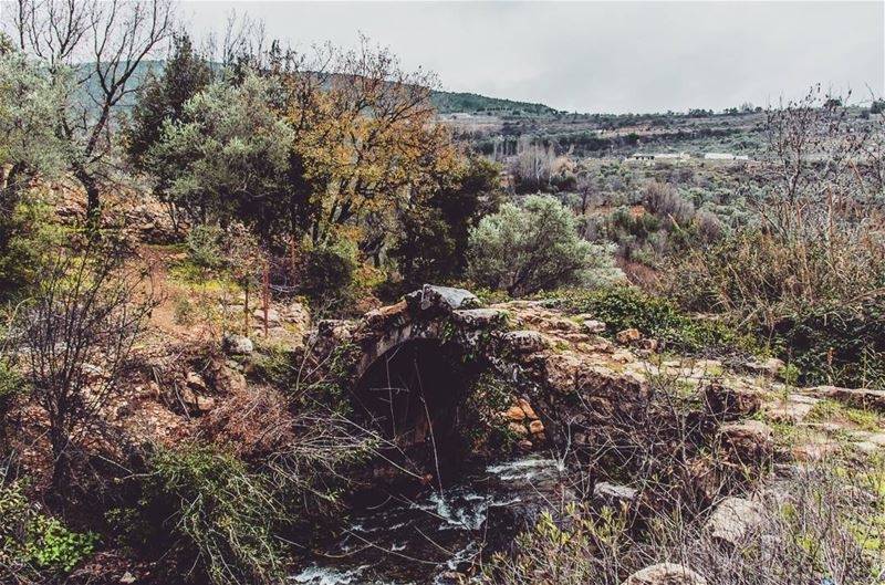 Some where in Chouf near Mokhtara. lebanon hiking nature outdoors ... (Chouf)