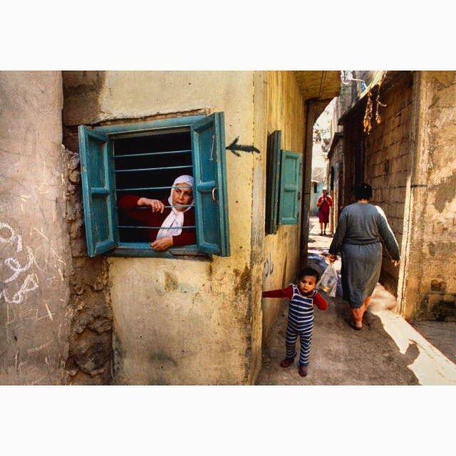 بيروت ١٩٨٢،