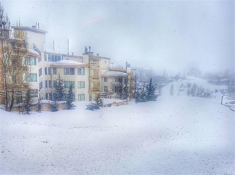 Wonderful view from faraya lebanon ig_great_pics worldplaces ...