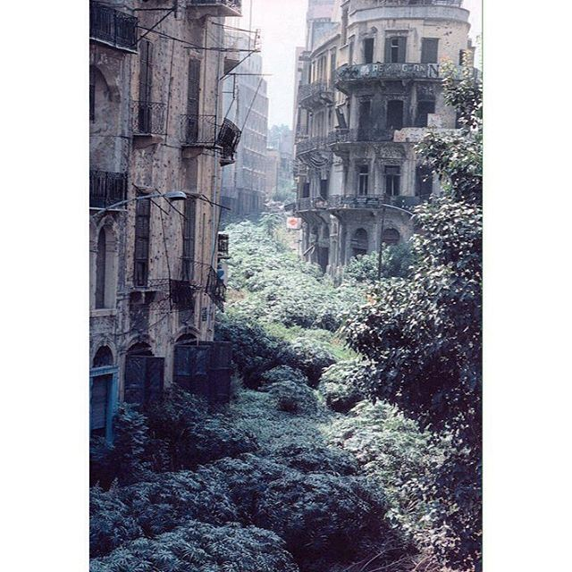 Beirut The Green Line - 1982 .