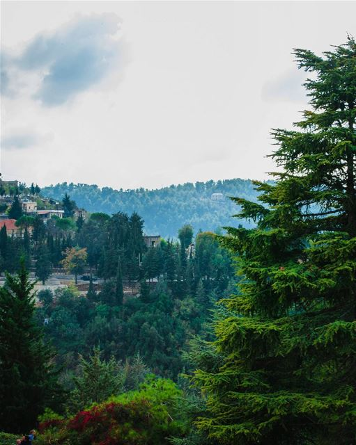 Arz El Chouf 🌲 Morning deirelqamar Chouf District Nature Mountains ... (دير القمر - Deir El Qamar)