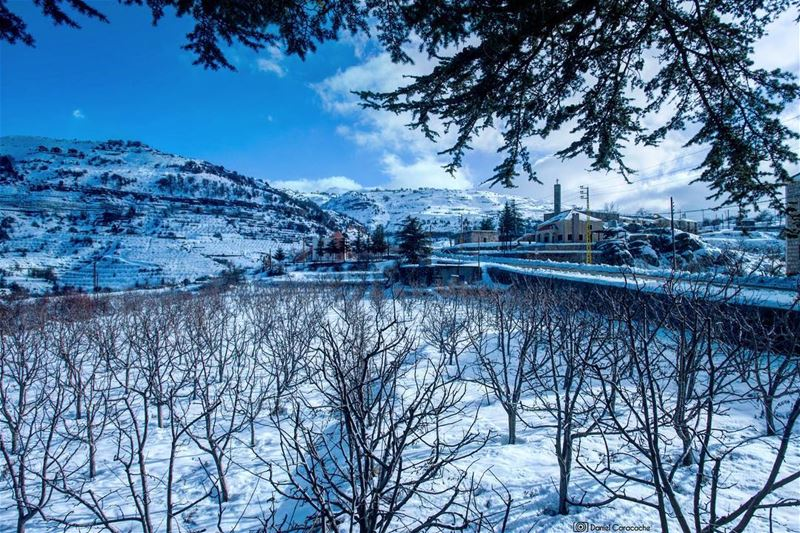 tannourine livelovetannourine lebanon mountains snow ...