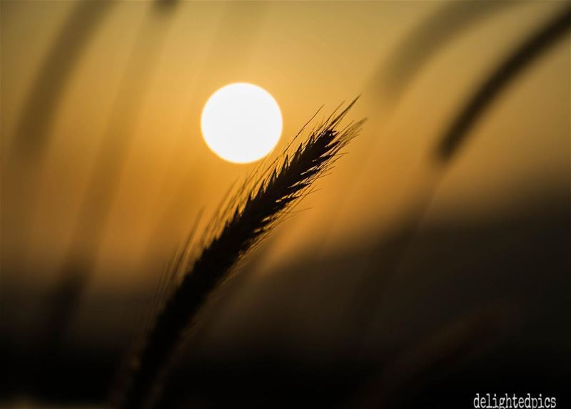 sunset photography lebanon ...
