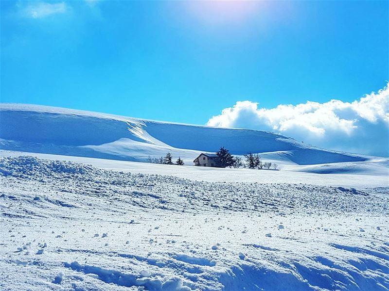 A little house on the glacier lebanonhouses snow mountain winter love... (Kanat Bakich)