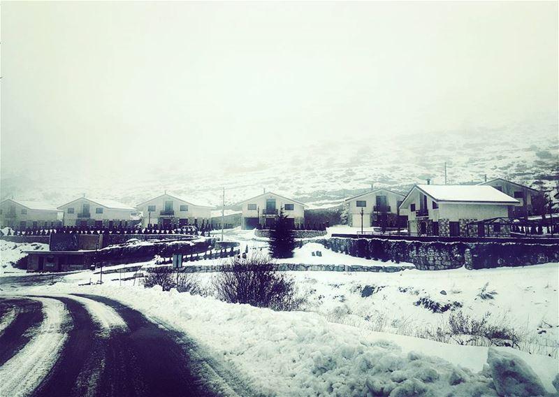Gloom Grabbing upintheair gloomgrabber lebanese winter landscape ...