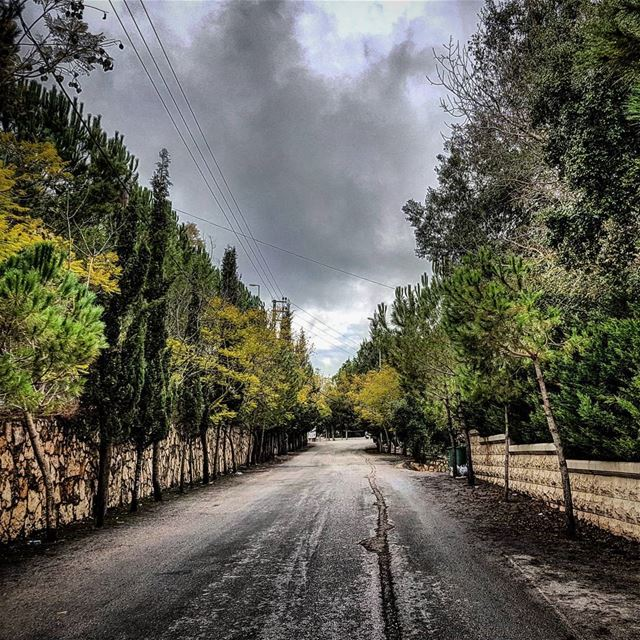 Falling  driveway  backagain  childhoodmemories  lebanese  winter ... (Tibnin)