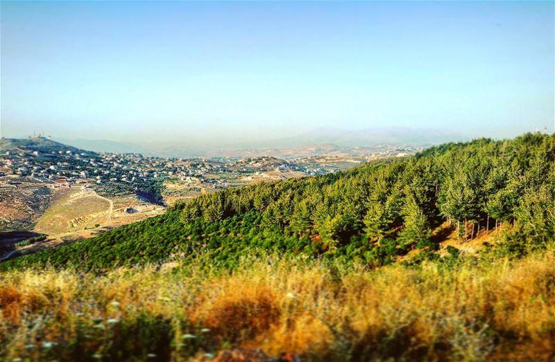Evergreen valley evergreen forest tibnine lebanon igersbeirut ... (Tibnin)