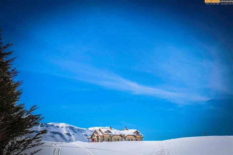 photo fadiaounphotography snow sky lebanon cedars photoshooting ...
