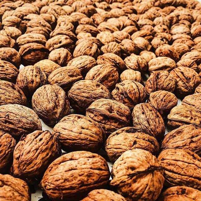 nuts lebanon ... (Wilro Park)