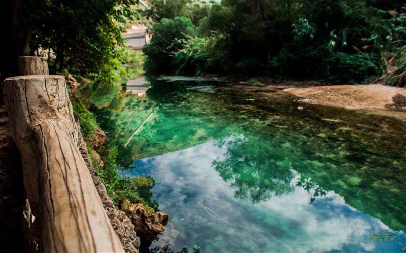 instapic instasize dam of joun wood water tree beautiful nature ...