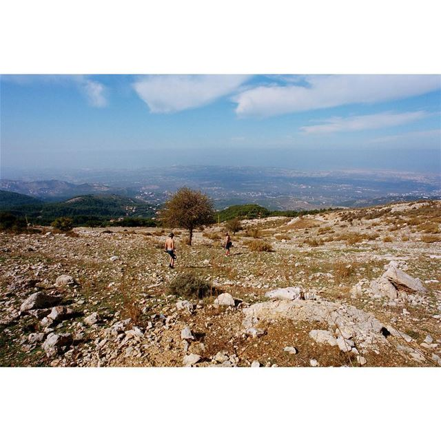 ⛰🕵️🌵looking for Niemeyer's work in the mountains——— kodak 35mm ... (Ehden, Lebanon)