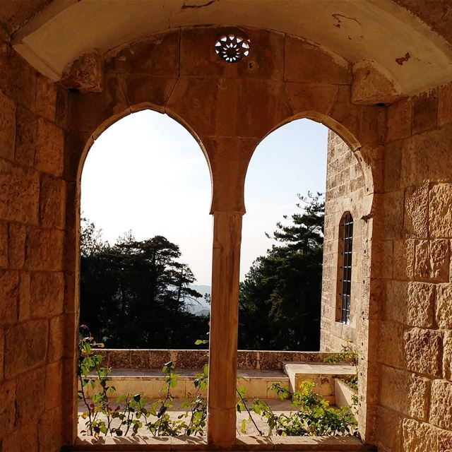 Nice spot for stretching then tea or coffee with a bite. castle chouf ... (Beiteddine Palace)