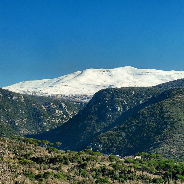 Mount Knaiseh stands in the middle of Mount-Lebanon, splitting it into...
