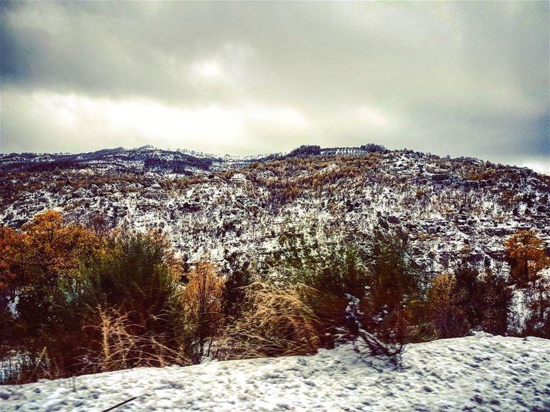 Winter Break seasons lebanese winter landscape lebanon ... (Faraya, Mont-Liban, Lebanon)