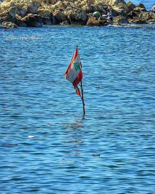 كلمة عيد الاستقلال لكم! _________ naturephotography nature_perfection ... (Lebanon)