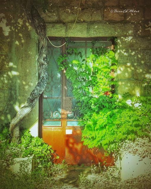 Les belles maisons vides... 🏡 _________________ house lonelyhouse ... (Tannourine)