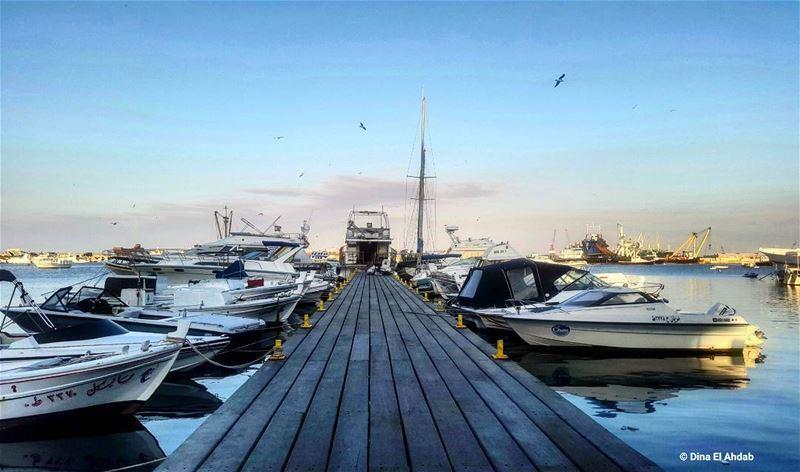 instadaily port lebanon livelovetripoli diah95 ... (طرابلس المينا)