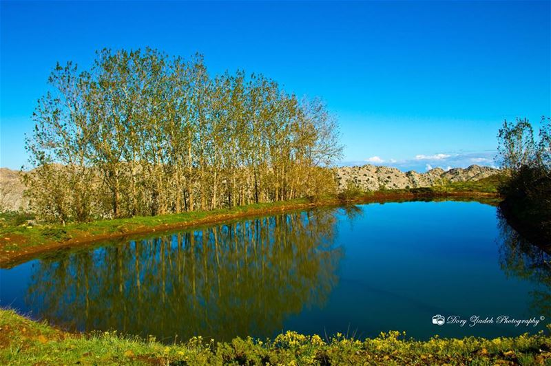 naturelovers nature_perfection discoverlebanon inthe961 insta_lebanon...