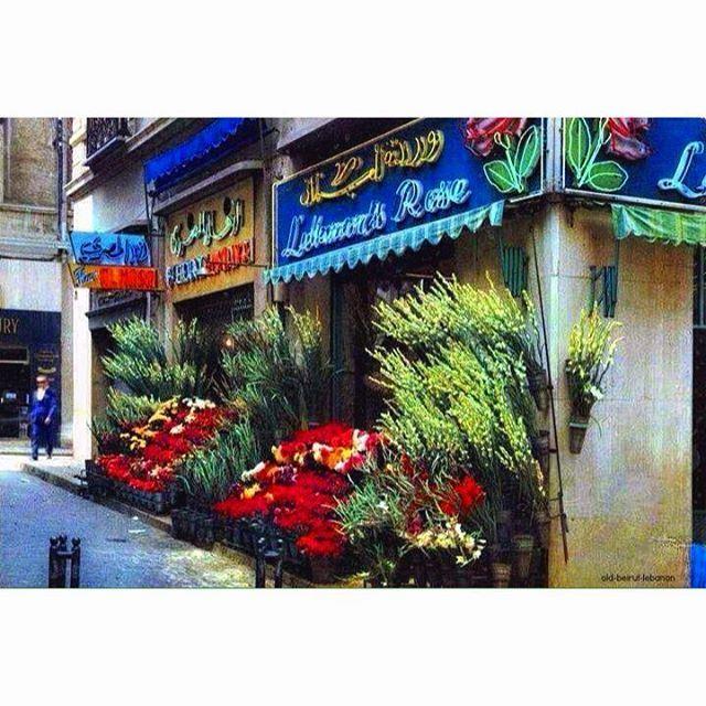 Beirut Flowers Market Near Bab Idriss 1964 .