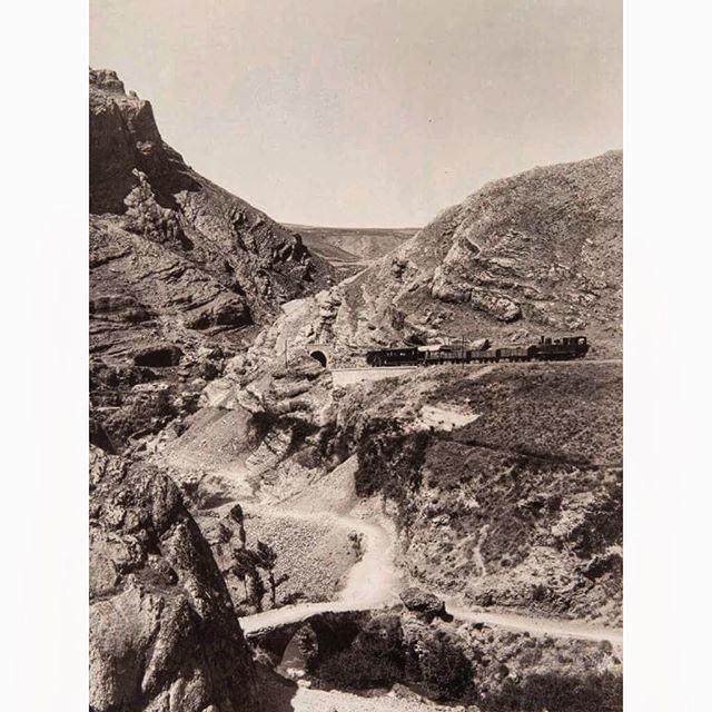 LebaneseTrain Bekaa