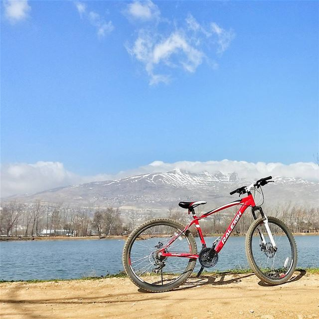 Life is like riding a bicycle. To keep your balance, you must keep moving.� (Taanayel Lake)
