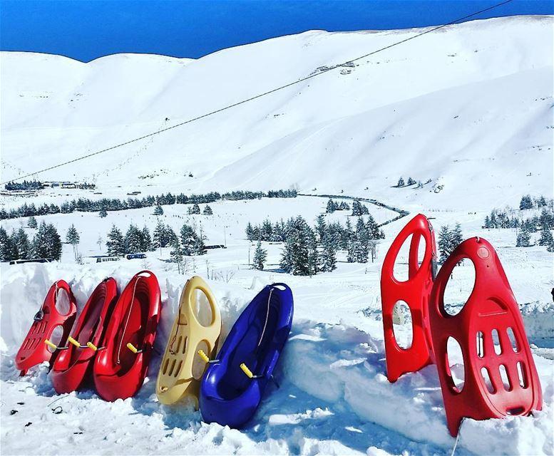 Red ❤ yellow 💛or blue 💙?🏂 livelovebeirut wearelebanon lebanon... (Arz Bcharé)