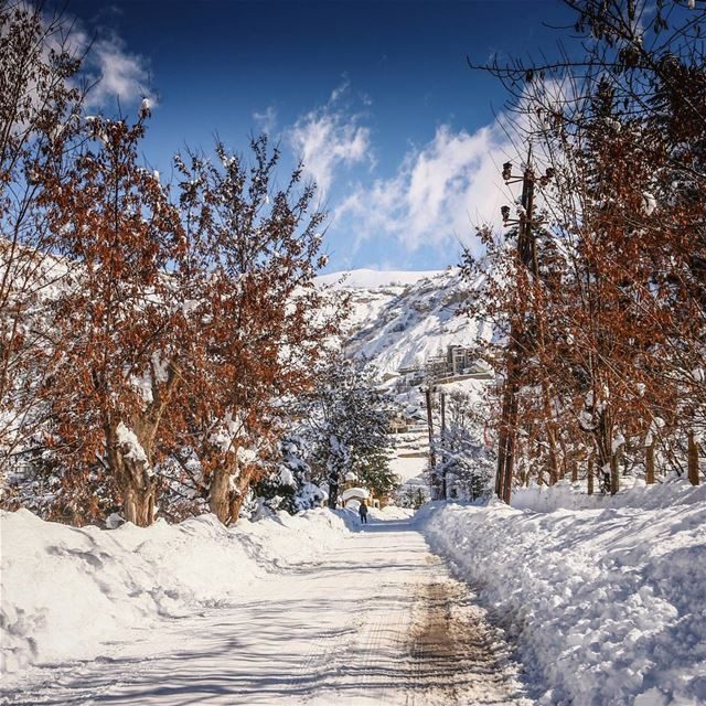 Lebanon Bcharre Snow Winter Mountain White Nature Sky Clouds ...
