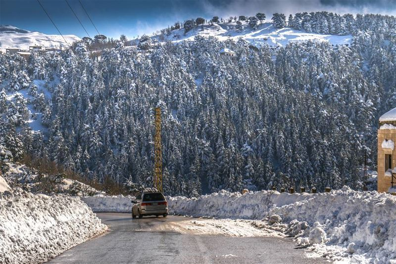 lebanon mountains road trees snow winter white nature ...