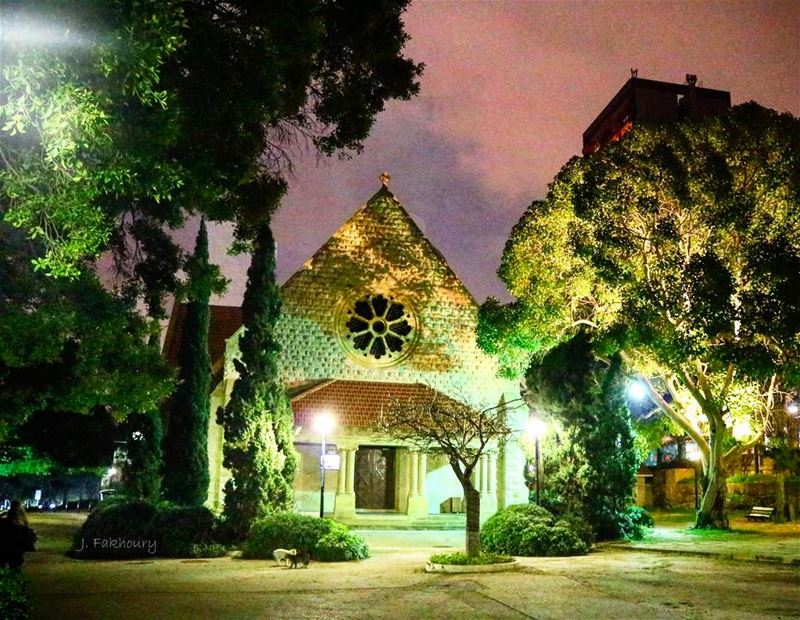 @livelove.aub magical... (American University of Beirut (AUB))