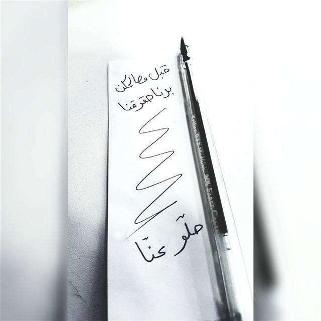 الإنتخابات_البلدية العملية_الإنتخابية بيروت لبنان ٨_أيار beirut ... (Beirut, Lebanon)