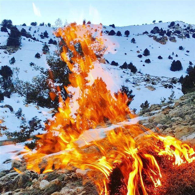 lebanon lebanon🇱🇧 beqaa bekaa hermel hermelcity jord marjhin ...