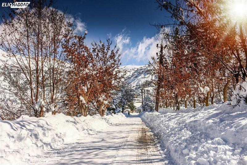 🇱🇧 MyLebanon 🇱🇧 Lebanon Sky Mountains clouds colors Snow Winter...