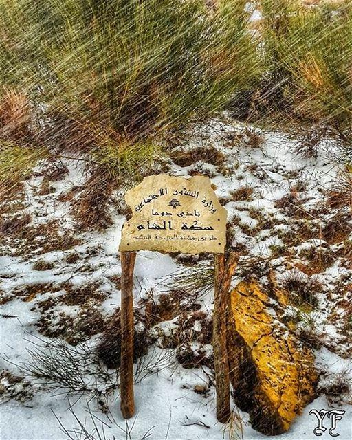 طريق الشام مقطوعة بسبب تراكم الثلوج ⛷😎🌨 livelovedouma livelovelebanon ... (Feghre-douma)