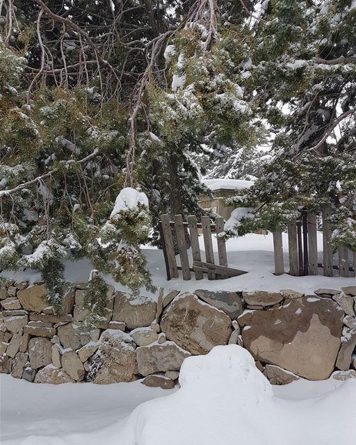 It is freezing.... snowing landscape landscapephotography neige ... (Faraya Mzaar)
