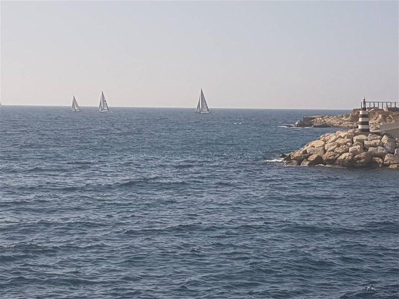 ⛵⛵⛵ sea sealover sailing sail water mediterranean bluesky blue ...