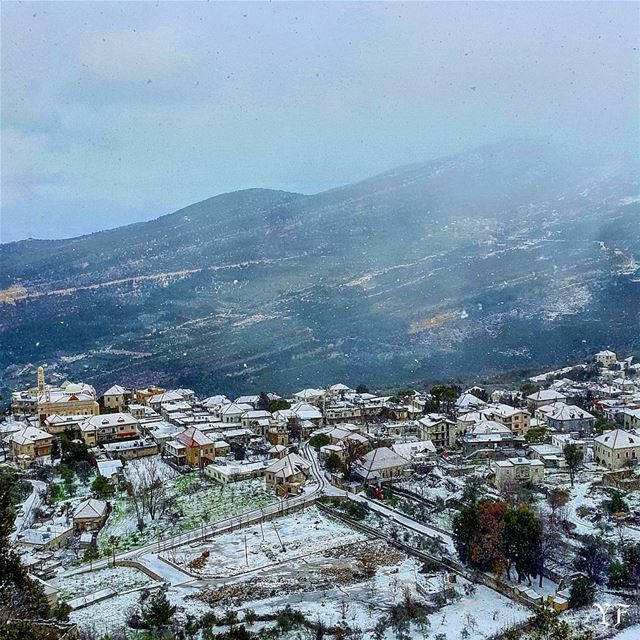 Snow time 🌨❄ livelovedouma livelovelebanon livelovebeirut ... (Douma, Liban-Nord, Lebanon)