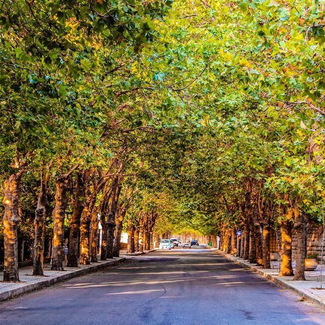 Love this street ... lebanon lebanon_hdr ig_lebanon insta_lebanon ... (Sawfar, Mont-Liban, Lebanon)