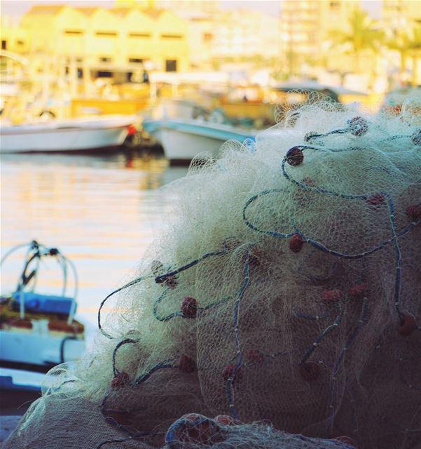 البساطة المعقدة.. lebanon lebanon_hdr ig_lebanon insta_lebanon ... (Tyre, Lebanon)