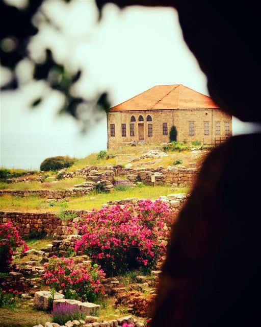 From Byblos... lebanon lebanon_hdr ig_lebanon insta_lebanon ... (Byblos - Jbeil)