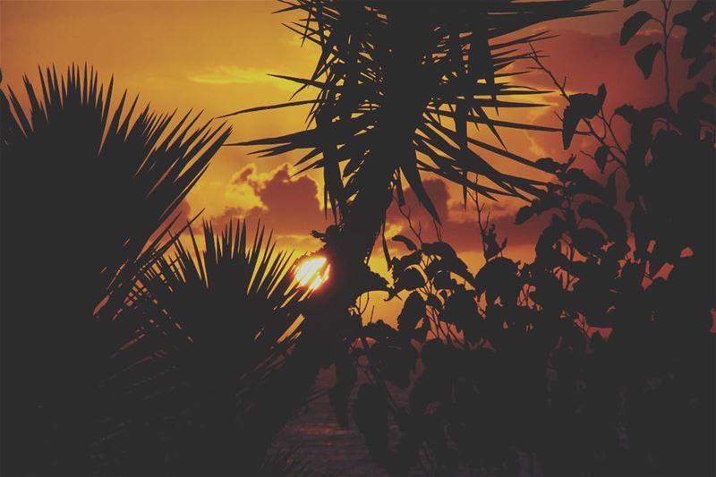My sunset... lebanon lebanon_hdr ig_lebanon insta_lebanon ...