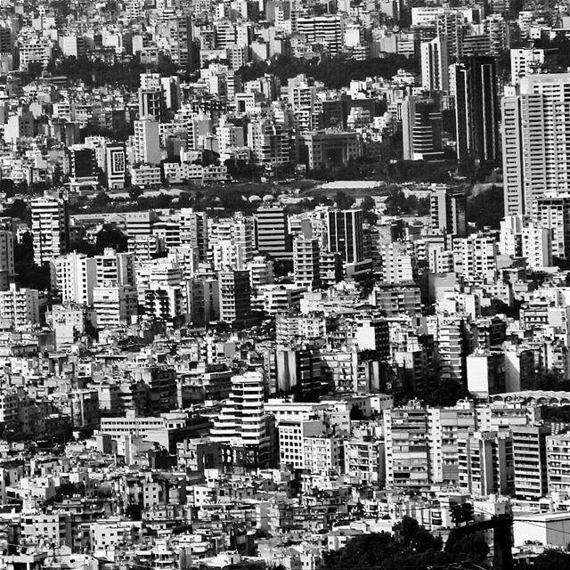 The Jungle....🇱🇧 lebanon lebanon_hdr ig_lebanon insta_lebanon ...