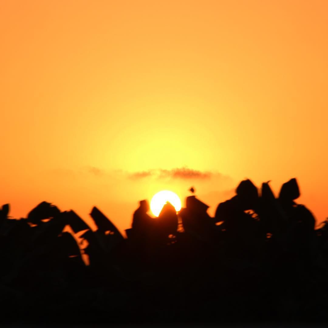 My sunset. 🇱🇧 lebanon lebanon_hdr lebanonlove lebanonmania ...