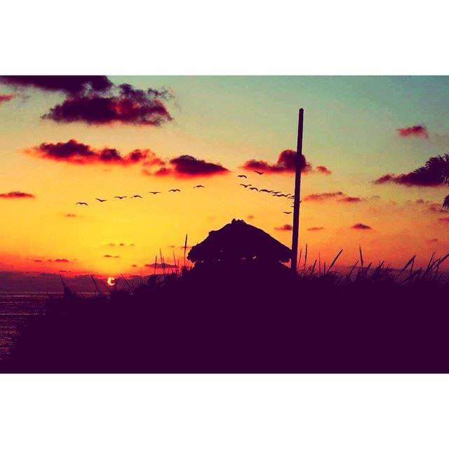 InstaSize sunset beirut lebanon wearelebanon proudlylebanese ...