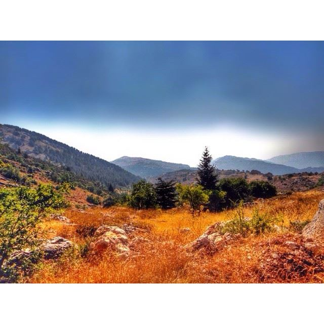 InstaSize lebanon barouk nature landscape wearelebanon ...