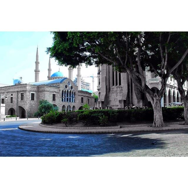 InstaSize lebanon liveloveleb livelovebeirut livelovelebanon ...
